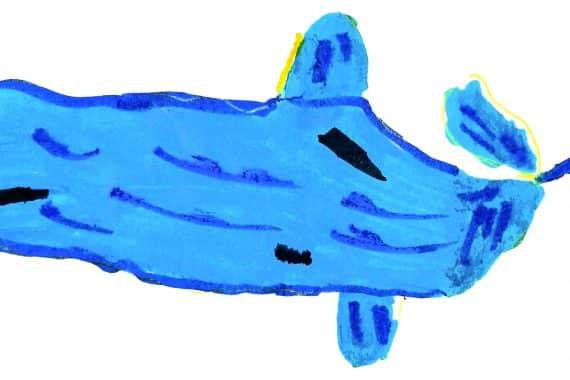 cachalot dessin enfant