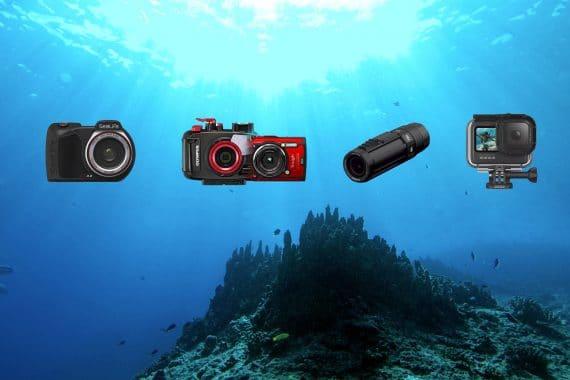 quel appareil photo pour la plongée sous-marine plongeurs padawan