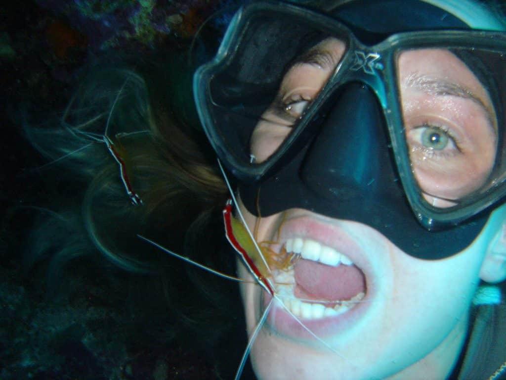 Une plongeuse profite d'un nettoyage de la bouche par une crevette sur une station de nettoyage sous-marine.