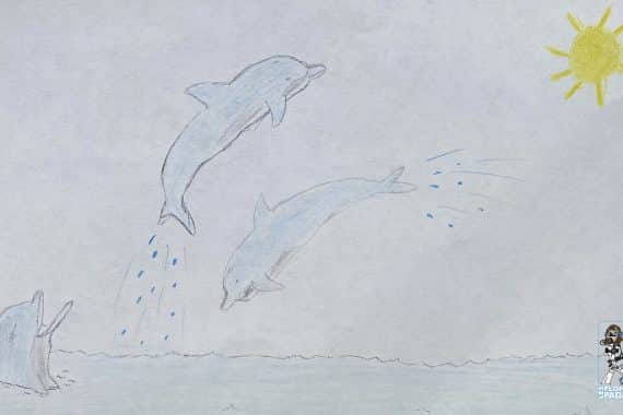 Dessin dauphins Gabin